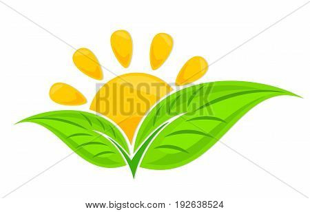 A logo of green leaves from the sun dawn.