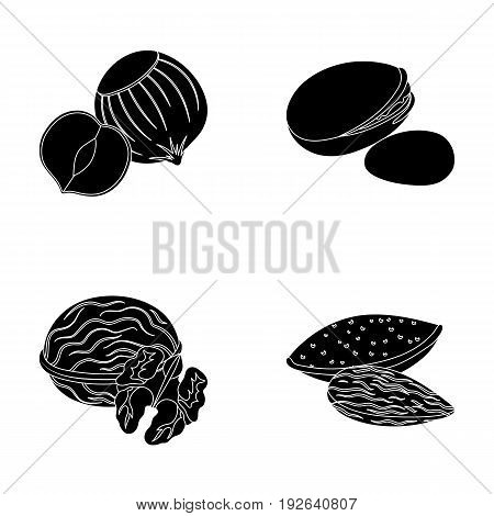 Hazelnut, pistachios, walnut, almonds.Different kinds of nuts set collection icons in black style vector symbol stock illustration .
