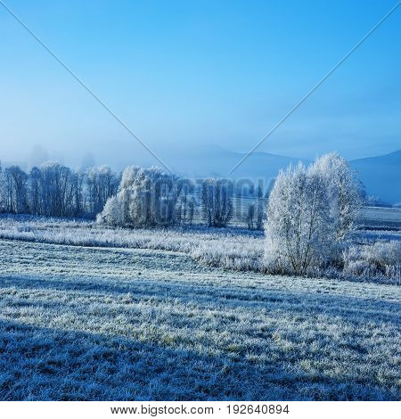 frozen landscape a beautiful winter frozen landscape - Sumava Czech republic