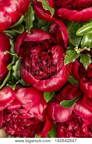 red peonies in vase on wooden floor and bokeh background - retro styled photo. soft focus. close-up
