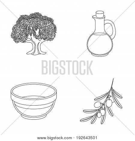 An olive tree, a branch with olives, a vessel and a jug of oil. Olives set collection icons in outline style vector symbol stock illustration .