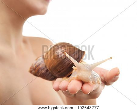 Female hand with giant Achatina snail on white background, closeup