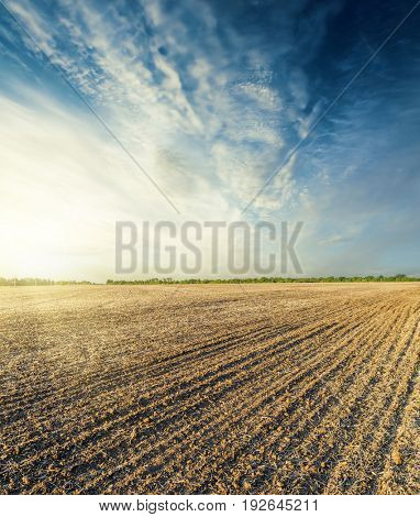 plowed field in autumn at sunset in blue sky