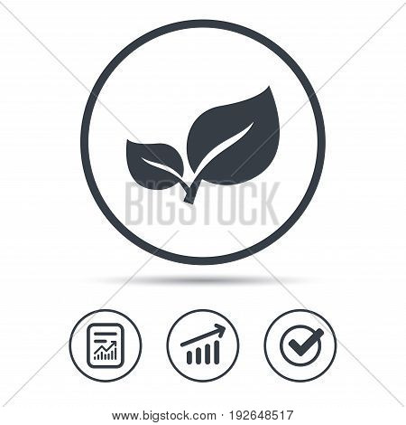 Leaf icon. Fresh organic product symbol. Report document, Graph chart and Check signs. Circle web buttons. Vector