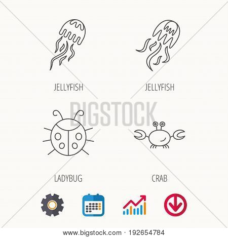 Jellyfish, crab and ladybug icons. Ladybird linear sign. Calendar, Graph chart and Cogwheel signs. Download colored web icon. Vector