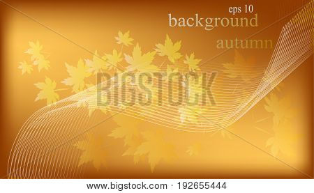 Autumn maple leaf, abstract , eps background