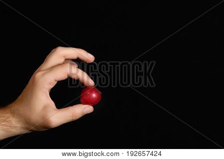 Radishes Sandwiched Between The Index Finger And Thumb On The Black