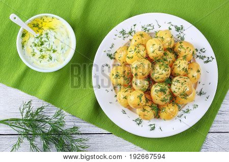 New Potatoes With Greek Yogurt Sauce