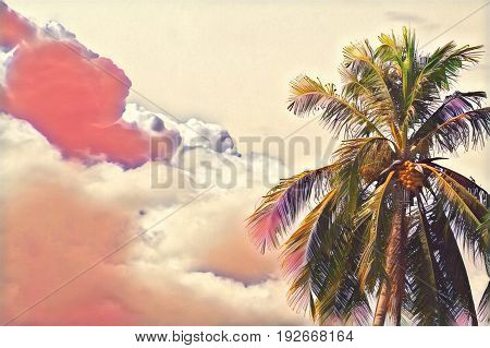 Cloud on pink sky and palm tree crown. Skyscape with big cloud digital illustration. Tropical island sky landscape. Spectacular fluffy cloud. Coco palm tree top banner template. Sunset background