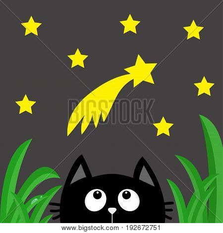 Black cat looking up to comet with stars in the dark night. Green grass dew drop. Cute cartoon character. Kawaii romantic animal. Greeting card. Flat Gray background Isolated. Vector illustration