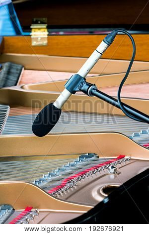 Professional Microphone Standing Above Strings Of Grand Piano