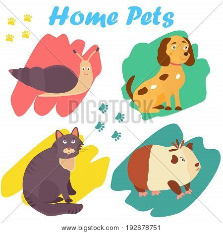 Bright images of domestic animals cat, snail, dog and guinea. Can be used for pet shops and clinics, pet food advertising.