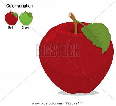 Isolated apple with leaf on transparent background. There are two apples , red and green for color variation