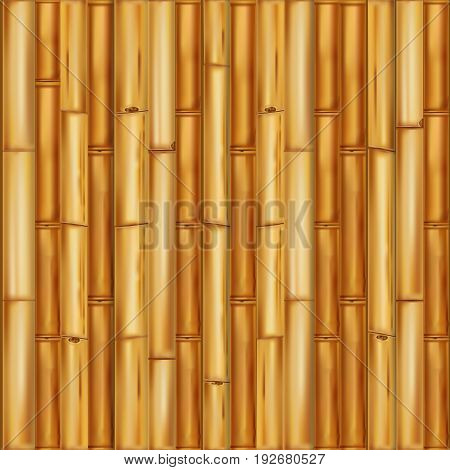 Realistic wooden bamboo background. Seamless pattern Vector.
