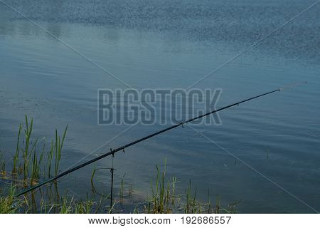 Fishing Rods With Reels On The Bank.