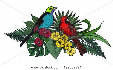 Vector composition of colorful tropical flowers, palm leaves, jungle plants, paradise bouquet with exotic bird. Beautiful floral illustration isolated on white background