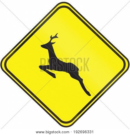 Road Sign Used In Uruguay - Deer Crossing