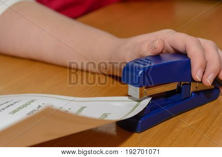 Working with a stapler in an office - close up
