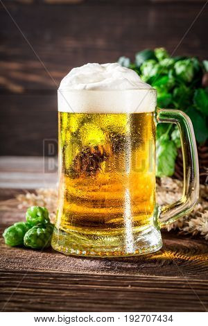 Closeup Of Fresh And Cold Beer With Wheat And Hops