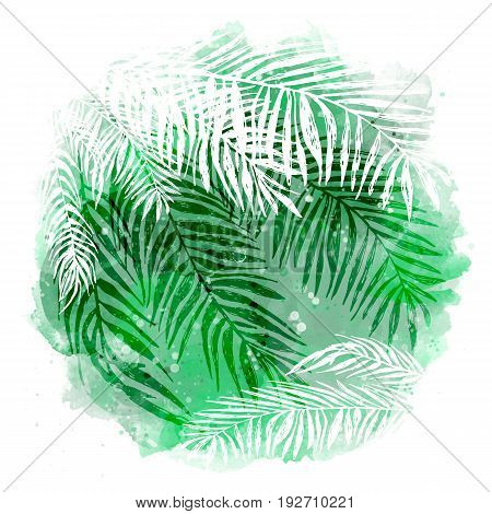 trendy green tropical background, exotic leaves, coconut palm. Vector illustration, elements for design.
