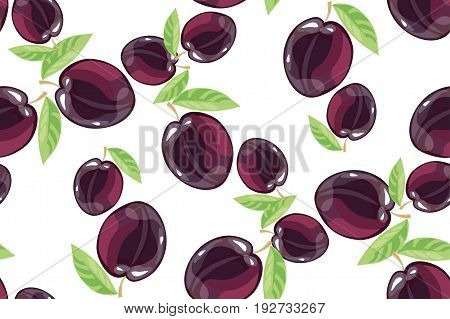 Plum fruits sketch drawing seamless background isolated on white