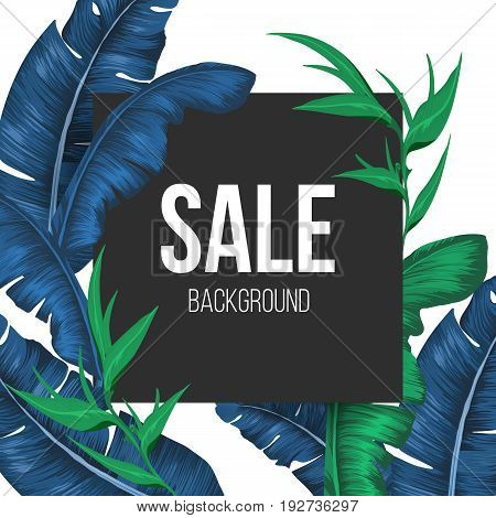 Sale banner background with exotic plants. Green bamboo and deep blue banana tree leaves that surround black square with text vector illustration.