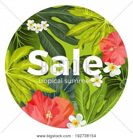 Sale promotional card with tropical Hibiscus and Plumeria flowers and green palm tree leaves in circle isolated on white vector illustration