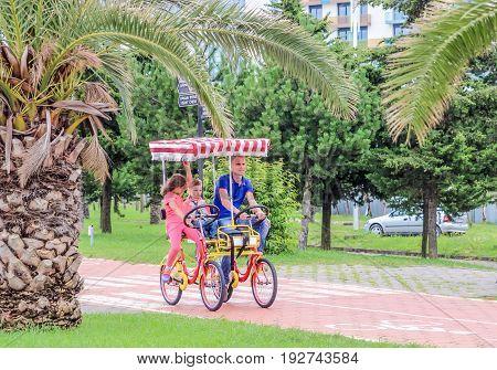 BATUMI GEORGIA-JULY 4 2015 Palm trees alley at promenade on Batumi Georgia and bicycle road