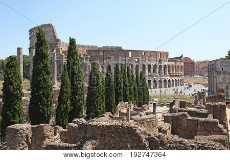 The Coliseum in Rome among the ruins and cypresses in the midst of the tourist season