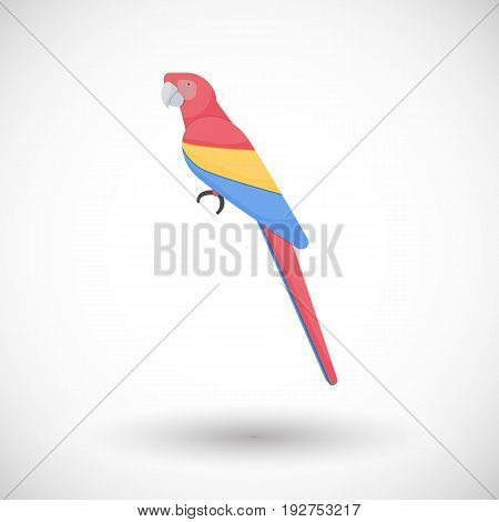 Scarlet macaw bird vector flat icon Flat design of animal or wildlife object with round shadow isolated on the white background vector illustration