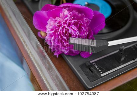 Beautiful peony flower laid on a retro vinyl stereo player closeup angled photo