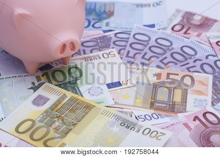 Pink piggy bank surrounded by euro banknotes