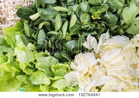 Close-up Of Healthy Organic Green Leafy Vegetable