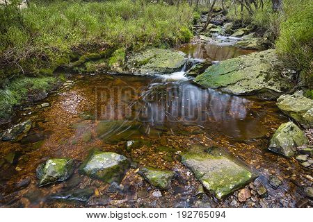 View of a small waterfall and lake of the mountain creek Tro Maret in the Ardennes, Belgium with bubbles moving around. The water is brown due to the high amount of peat in the area.