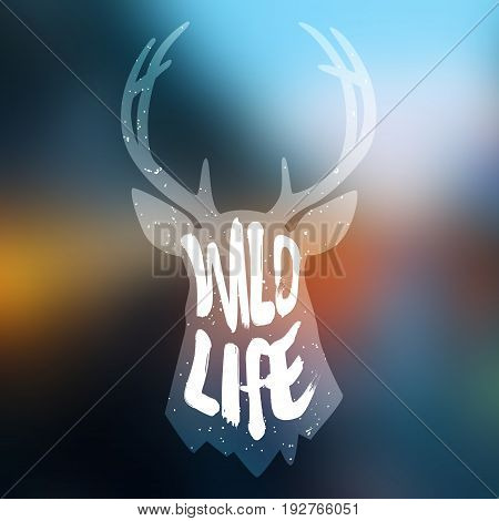 Silhouette of deer head with text wild life on blur background. Vector.