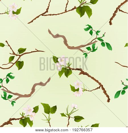 Seamless texture branch various Sprigs twig apple tree and bush vintage vector illustration hand draw
