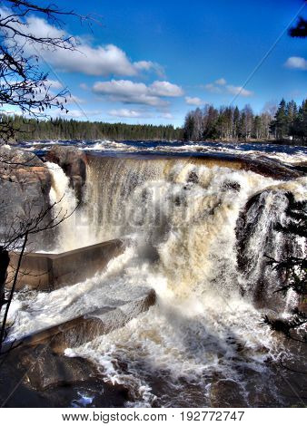 A really good place to experience both Swedish nature