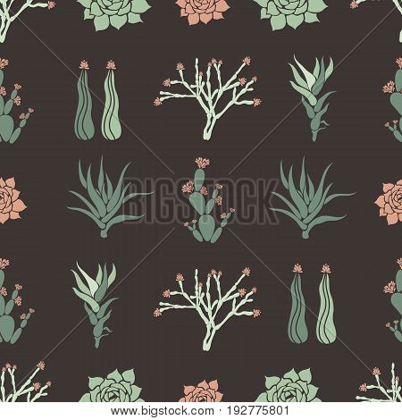 Sempervivum, Haworthia, Opuntia, Hatiora. Seamless pattern with cacti, succulents. Vector illustration.