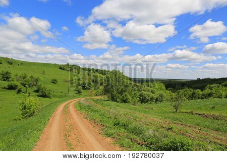 summer scene with rut road on hill's slope