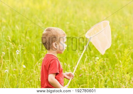 Little boy with a butterfly net catches on a summer meadow