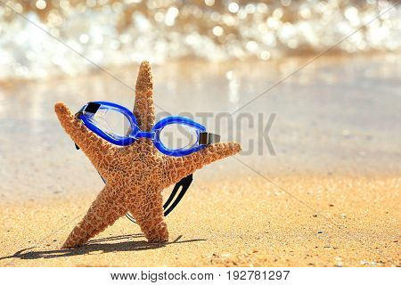 Swimming goggles and starfish on sand at sea shore. Vacation concept