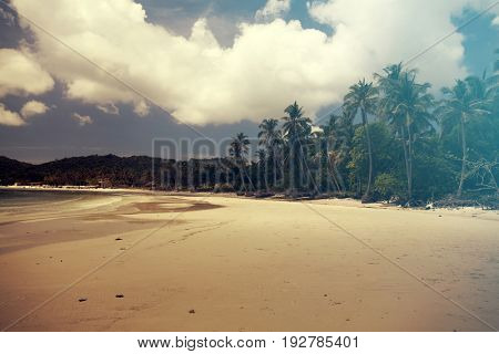 Tropical beach background with palm trees white sand and blue sky. Vintage effect.