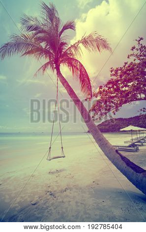 Tropical beach background with palm trees white sand, blue sky and a swing hanging on the tree. Vintage effect