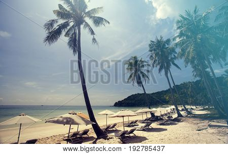 Tropical beach background with palm trees and blue sky. Vintage effect.
