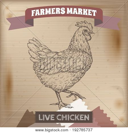 Vintage farmers market label with live chicken. Placed on wooden texture. Includes hand drawn elements.