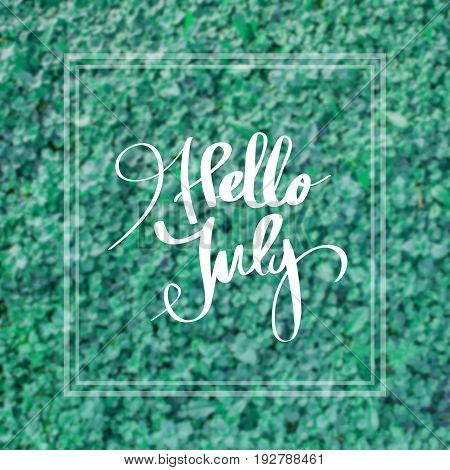 Hello July. Inspirational quote on blurred landscape background
