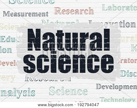 Science concept: Painted black text Natural Science on White Brick wall background with  Tag Cloud