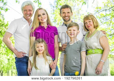Portrait of cheerful extended family standing at the park