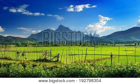 Road view in Lao kasi vang vieng beautiful