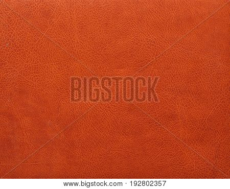 leather texture. simple background texture.